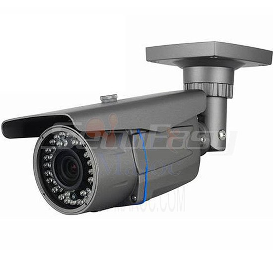 Camera  Weatherproof IR IP camera with 3-Axis Bracket SE-NI203N